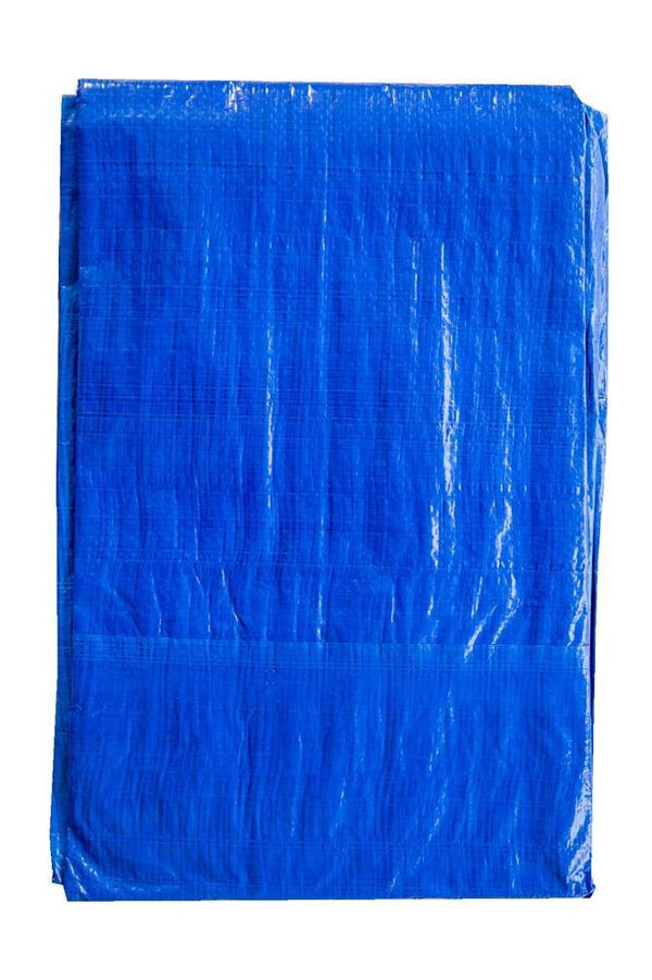 Tarpaulin - 10 x 12ft - Blue - 90GSM