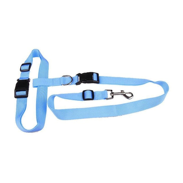 Light blue  hands free pulling leash