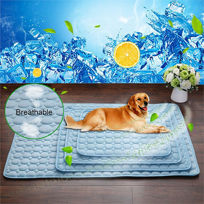 Dog laying on a cooling pet cushion bed