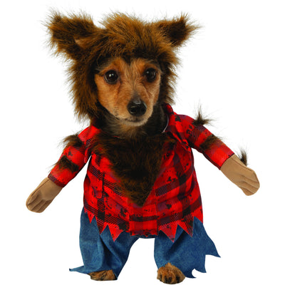 Dog wearing the big bad wolf walking costume