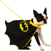 Dog wearing a batman costume