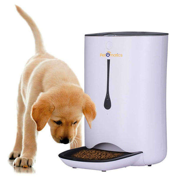 Dog eating from the automatic pet food dispenser