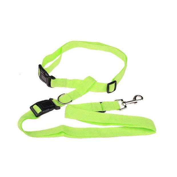 Bright green  hands free pulling leash
