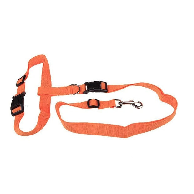 Orange  hands free pulling leash