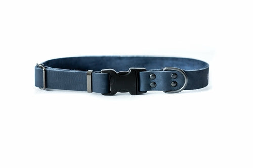 Blue Sport style quick release soft leather dog collar