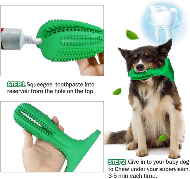 Dog with natural rubber bite chew toy toothbrush