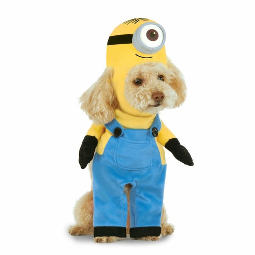Dog wearing walking minion stuart costume