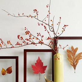 Easy DIY Home Decor for Autumn! article image