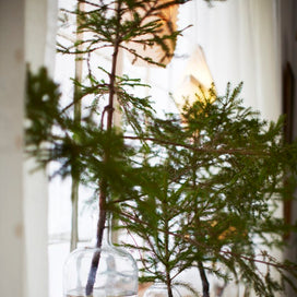 5 Favorites: No-Cost Holiday Decor Ideas article image
