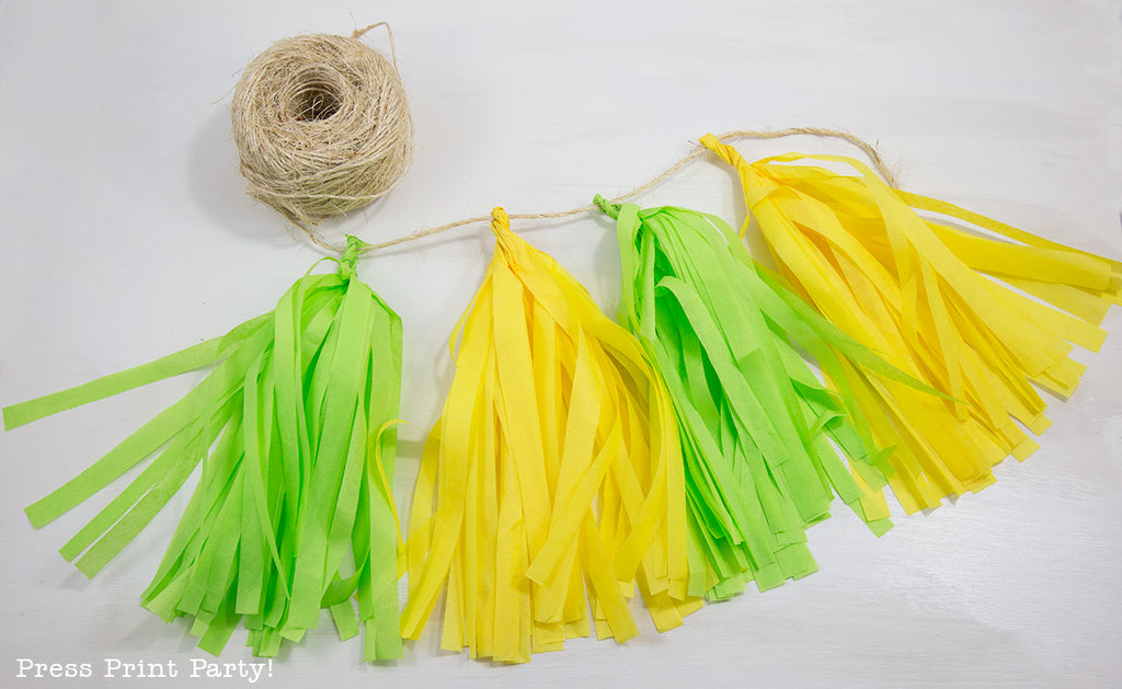 DIY, fringe, party, decor, how to, home decor
