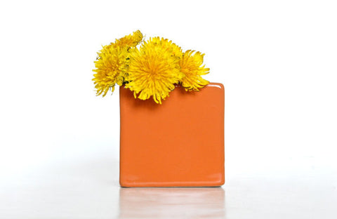 modern orange flower pot