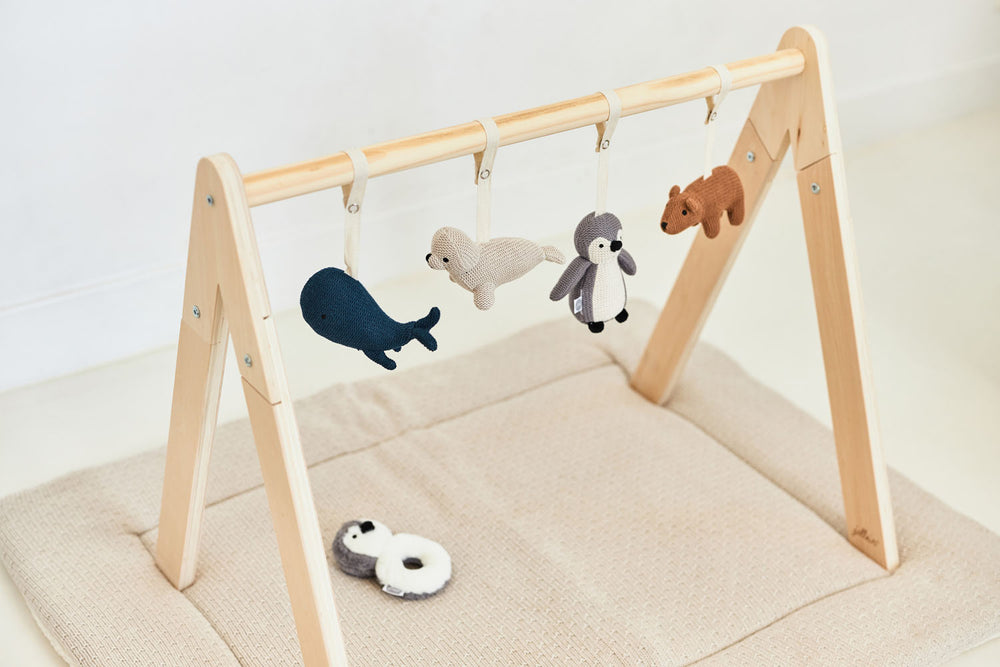 Set of 4 toys for babygym