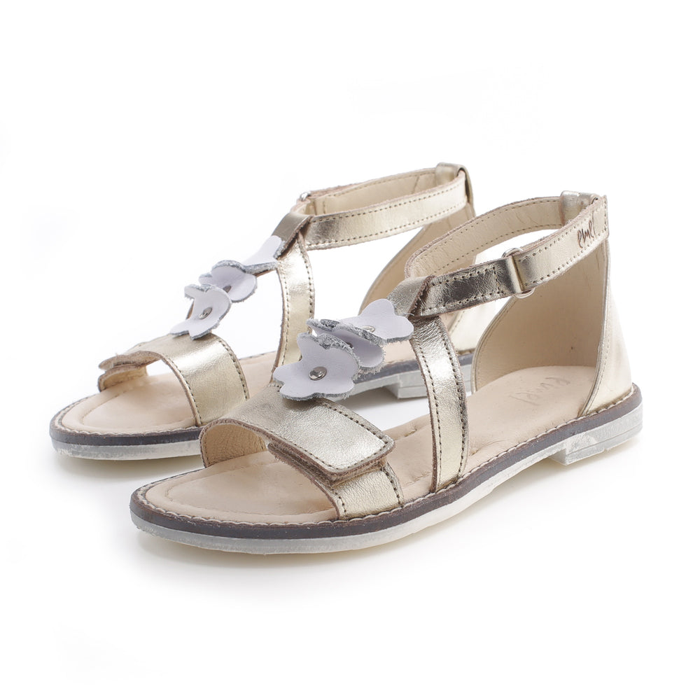 (2577) Emel velcro sandals  gold flowers