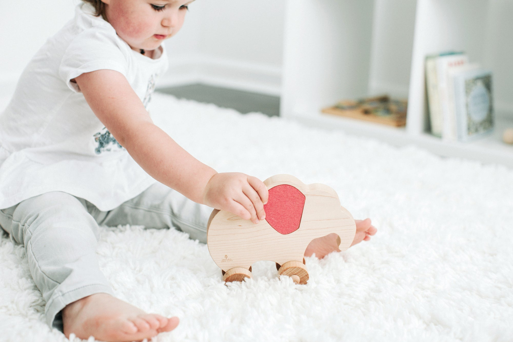 NEW | HeartFELT™ Push Toys