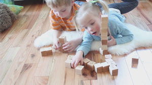 Animal Alphabet Blocks ABCs wooden block set