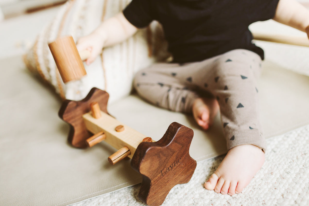 hammer and peg toy - wooden educational toys