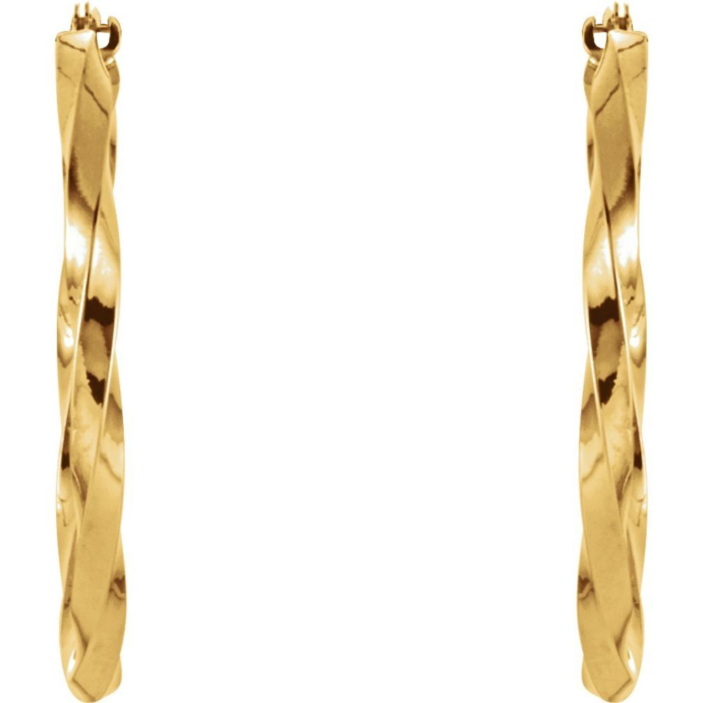 Twisted Hoop Earrings (9760573)