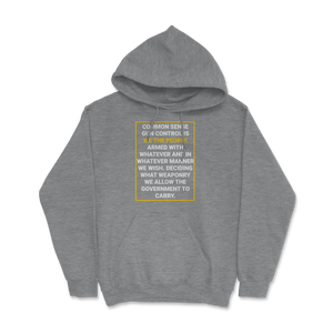 Common Sense Gun Control Hoodie - Libertarian Candidates News and Merchandise
