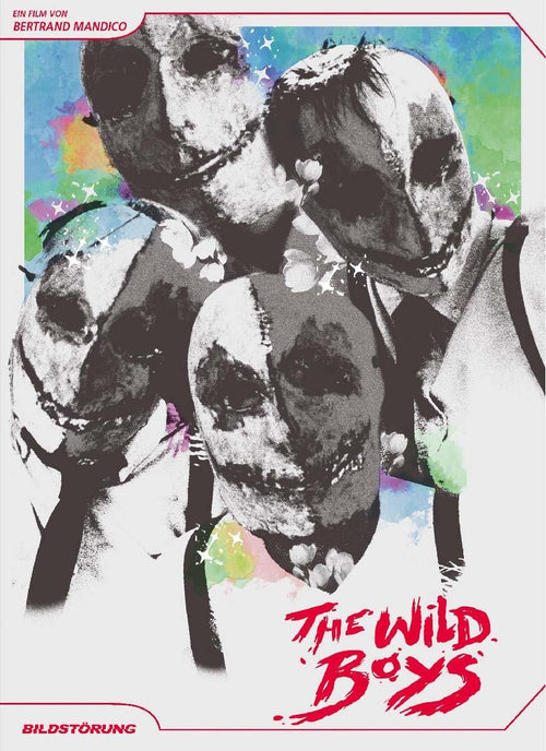 The Wild Boys - DVD Cover