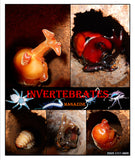 Invertebrates-Magazine (April 2021)
