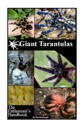 Giant Tarantulas: The Enthusiast's Handbook
