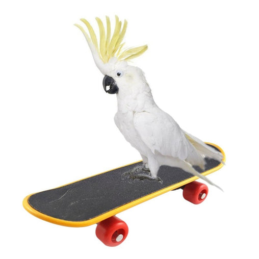 Pet Bird Skateboard