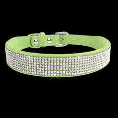 Bing Dog Collar