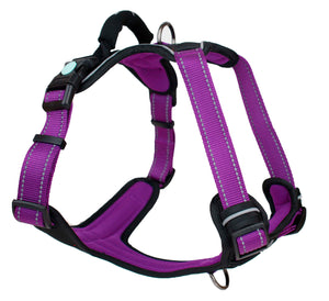 Huskimo Ultimate Harness Aurora Extra Large