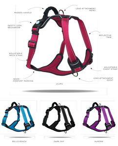 Huskimo Ultimate Harness Aurora Large