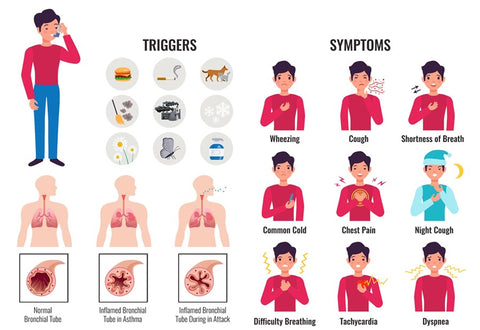 Asthma triggers and symptoms