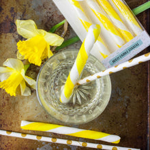 Load image into Gallery viewer, Gin and Lemon Drink Stirrers