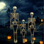Halloween Prop Skeleton Full Size Skeleton Skull Hand Lifelike Human Body Poseable Anatomy Model Party Festival Decoration