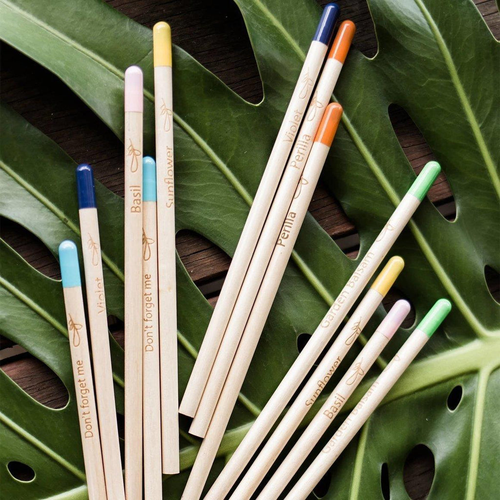 100% Sustainable Seed Pencils | Sprout Pencils