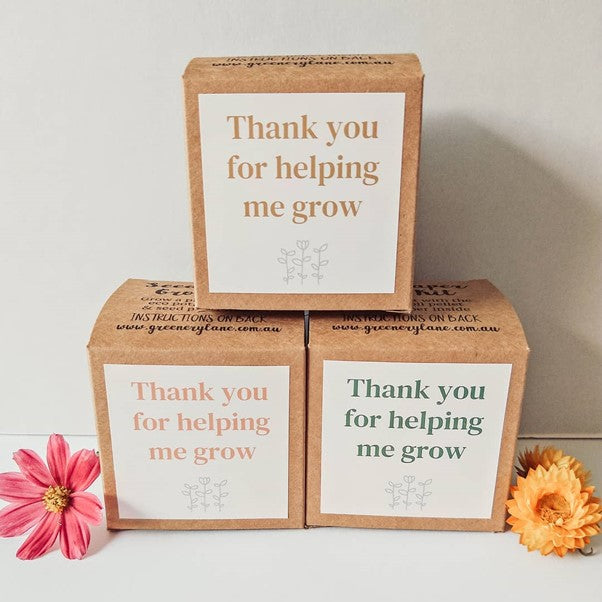 TEACHERS GIFTS - SEED PAPER GROW KIT