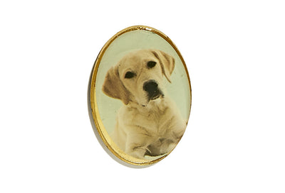 Vintage Framed Pet Pin