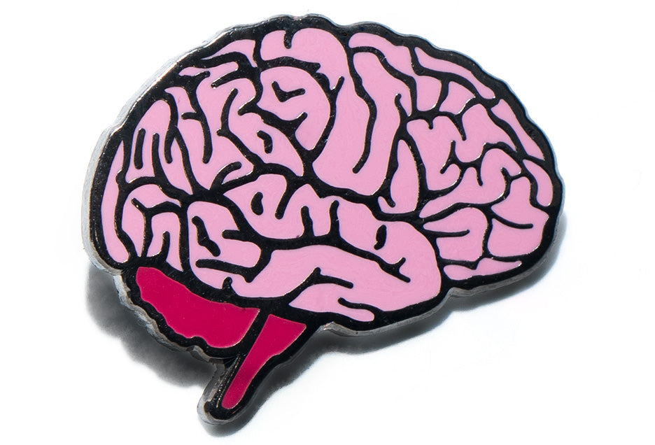 Anatomical Brain Pin