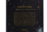 Constellations - Capricorn Pin