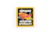 Vintage Red Robin Pin 2