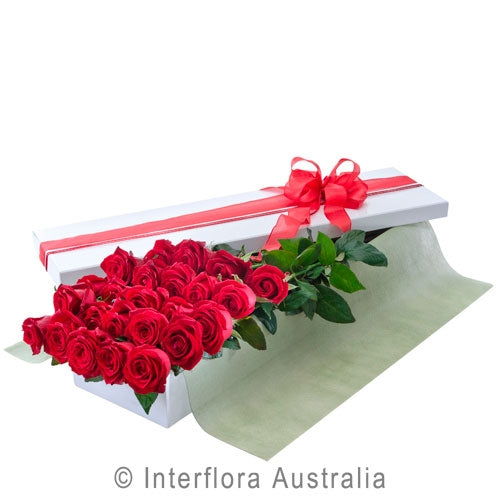 Valentines 24 Long Red Roses in Presentation Box