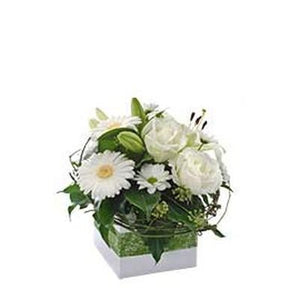 Florist Choice White Mini Box