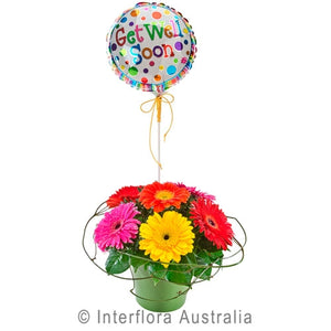 Funky Gerberas with Get Well Balloon