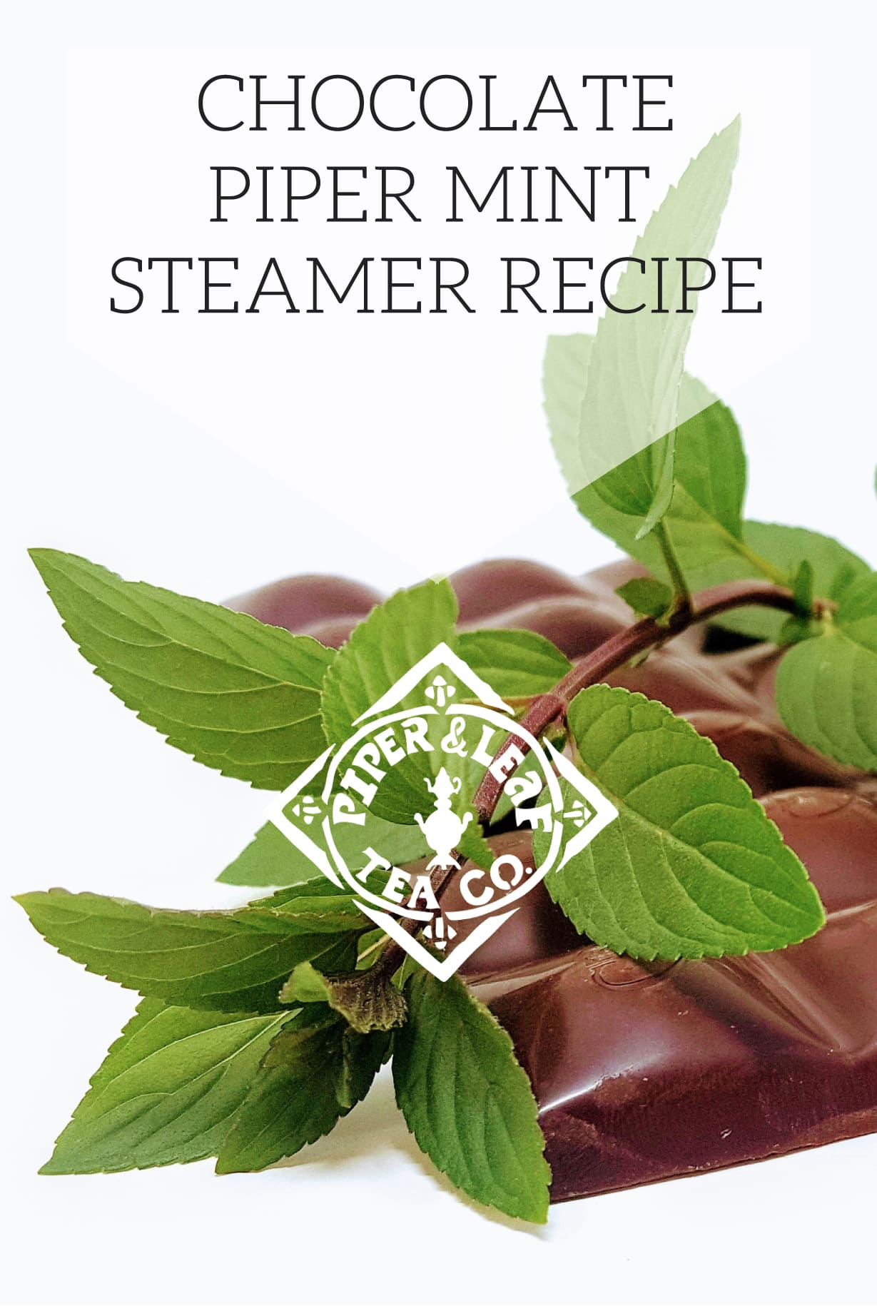 Chocolate Piper Mint Steamer