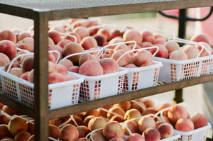 Several baskets of fresh peaches, ripe and ready to be processed