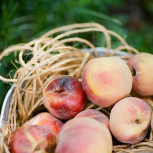 A basket full of fresh, ripe summer peaches