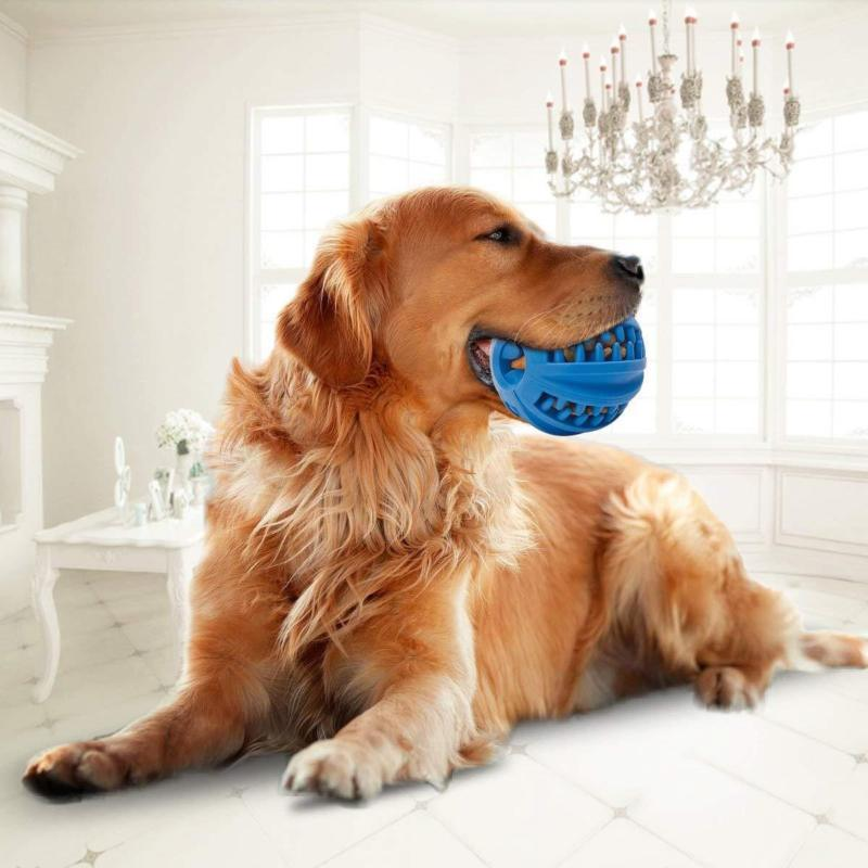 IQ Blue Treat Ball - Pets Watching