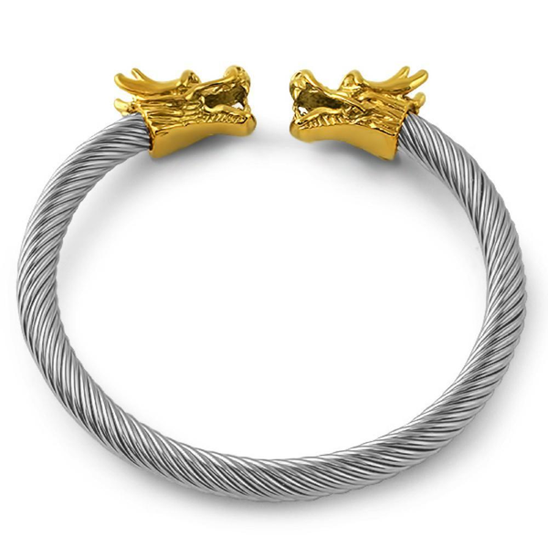 Dragons Wire 2 Tone Bangle Bracelet Stainless Steel