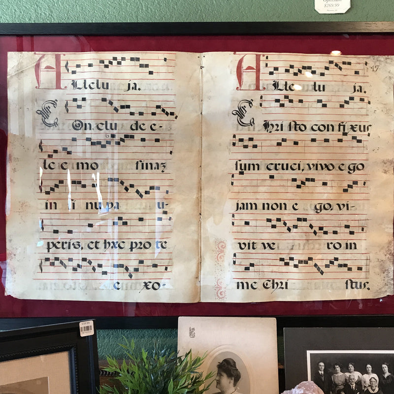 Framed Antique Spanish Choir Music Book Page - Curious Nature