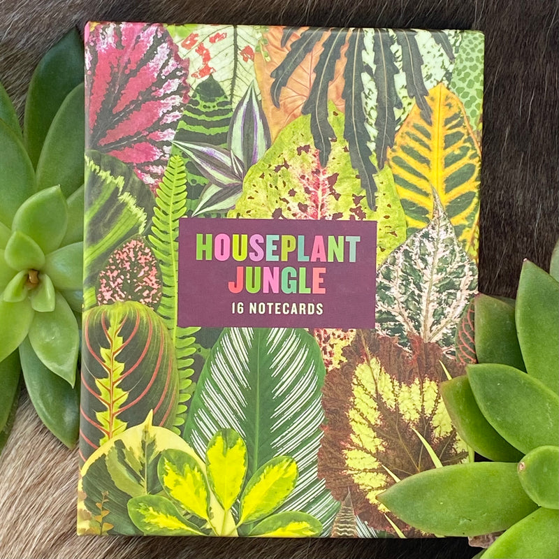 Houseplant Jungle Notecards