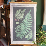 Vintage Style Fern Charts