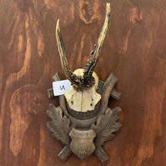 """U"" Antique Roe Deer Skull Plate Wall Hanging"